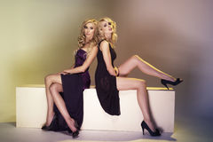Two sexy women Royalty Free Stock Photography