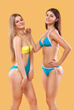 Two sexy women in swimwear posing on orange background. Perfect body. Bikini summer advertisement concept. Stock Images