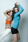 Two sexy young girls Stock Photos