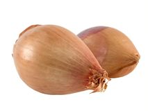 Two shallots Royalty Free Stock Image