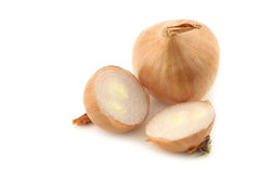 Two shallots and a cut one Stock Image