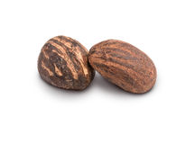 Two shea butter nuts on white Royalty Free Stock Photography