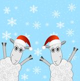 Two sheep are in christmas caps. Vector  illustration Stock Photography
