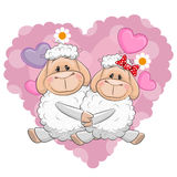 Two Sheep Royalty Free Stock Photo