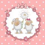 Two Sheep Stock Image