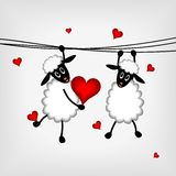 Two sheep with red hearts Stock Photos