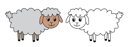 Two sheep, set, vector, illustration. Stock Images