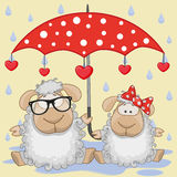 Two Sheep with umbrella Royalty Free Stock Photos