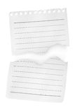 Two sheets of paper. Sheet of lined paper isolated on white background Stock Photography