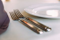 Two shiny forks. Two table shiny forks on the table Stock Photography