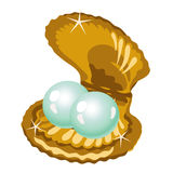 Two shiny pearls in a gold box of shells Royalty Free Stock Image