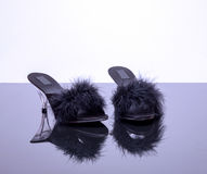 Two shoes with feathers royalty free stock photography