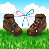 Two shoes with laces on the green grass Stock Images