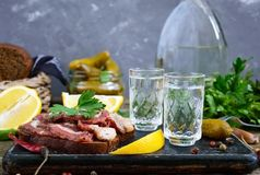 Two shot glasses of vodka with lemon slice, pickled cucumbers and rye bread with salted bacon on the dark background. Traditional strong drink and appetizer Stock Images