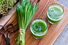 Two shots of barley grass juice with freshly harvested barley gr. Ass, top view Royalty Free Stock Photography