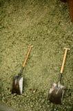 Two shovel in dry alfalfa, horses food Royalty Free Stock Image