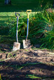 Two shovels in ground Stock Image