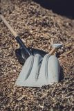 Two shovels in a sawmill. Two wooden and plastic shovels on a pile of shavings in a sawmill stock images