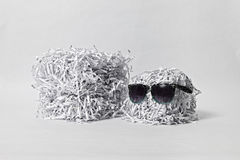 Two Shredded Paper Cubes Wearing Sunglasses Stock Photography