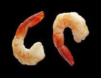 Two Shrimp Stock Image