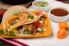 Two Shrimp Fajitas Royalty Free Stock Photo