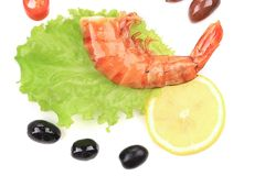 Two shrimp with lemon. Royalty Free Stock Photos