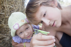 Two siblings carrying green praying mantis in summer field Royalty Free Stock Photography