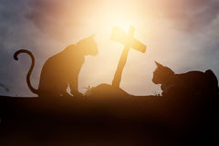Two silhouette cats were crouching at  the tomb of it friend Stock Photography