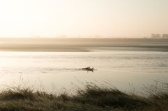 Two silhouetted surfers paddling on the River Severn on a misty sunny early morning stock images