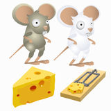 Two silly mice and piece of cheese in mousetrap Royalty Free Stock Image