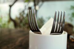 Two silver forks. Beautiful table setting close up Royalty Free Stock Image