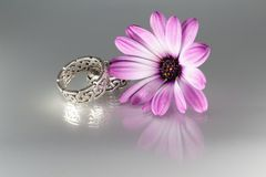 Our silver engagement rings with Irish ornaments with a flower stock image