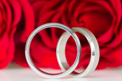 Two silver rings with red roses Stock Images
