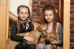 Two sister girls with puppies Royalty Free Stock Photos
