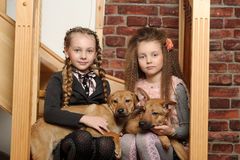 Two sister girls with puppies stock photography