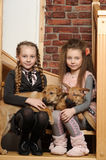 Two sister girls with puppies royalty free stock images