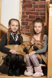 Two sister girls with puppies royalty free stock photo