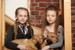 Two sister girls with puppies stock photo