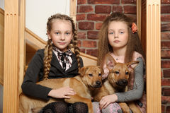 Two sister girls with puppies stock images