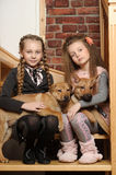 Two sister girls with puppies Stock Photos