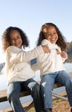 Two sisters. Two beautiful mixed race sisters enjoying the park Stock Photography