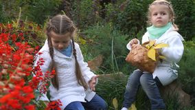 Two sisters in an autumn park. Cute little girls. The younger sister holds a wicker basket with fallen leaves. Family fun outdoors stock video footage