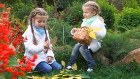 Two sisters in an autumn park. Lovely little girls. The oldest girl found mushrooms. The younger sister holds a wicker basket with fallen leaves. Family stock video footage