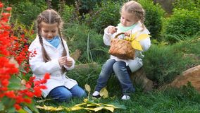 Two sisters in an autumn park. Two sisters in autumn park. Cute little girls. The oldest girl found mushrooms. The younger sister holds a wicker basket with stock video