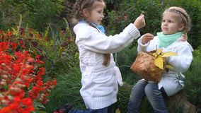 Two sisters in an autumn park. Pick the fallen leaves in a wicker basket. They rejoice at the found mushrooms. Cute little girls. Family fun outdoors stock video footage
