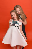 Two sisters in beautiful stylized dresses on a red background in. The studio. Two blonde girls posing in studio royalty free stock photography
