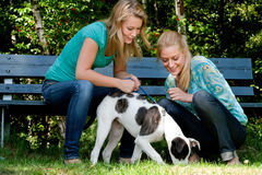 Two sisters and a dog Royalty Free Stock Images
