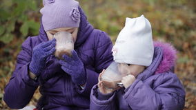 Two sisters drink cocoa with marshmallows in the autumn park. Two sisters are drinking warm cocoa in cold autumn park stock footage