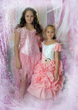 Two  sisters in elegant dresses Stock Photography