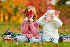 Two sisters having fun together in autumn park Royalty Free Stock Image